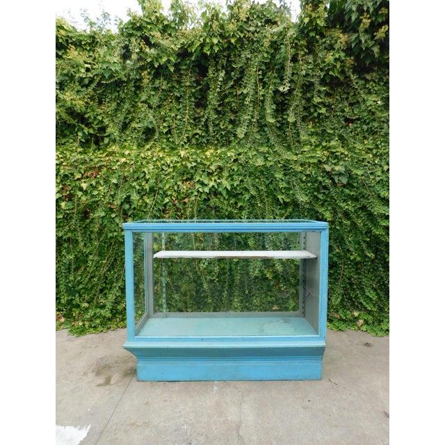 Wood Vintage Botanical Blue Display Case For Sale - Image 7 of 7