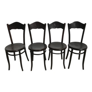 1910s Antique Mundus and Kohn Bistrot Bentwood Chairs- Set of 4 For Sale