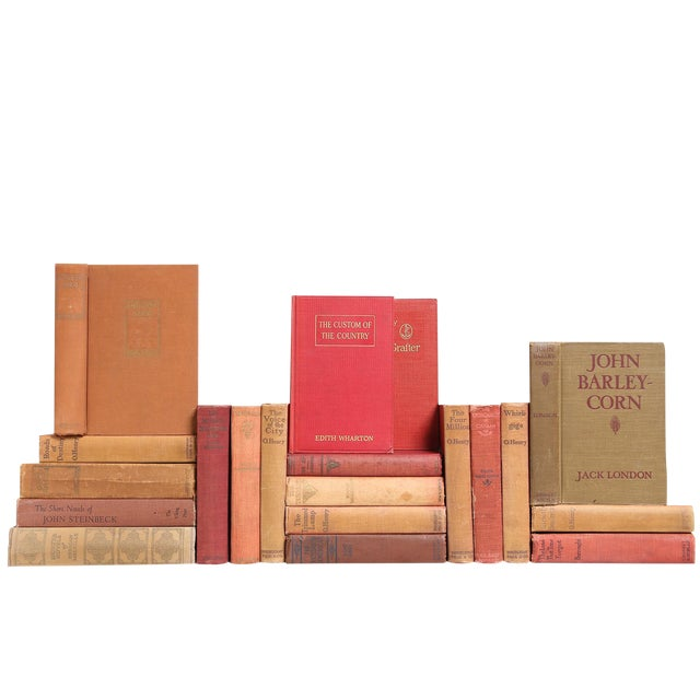 Clay-Toned American Classic Books - Set of 20 For Sale