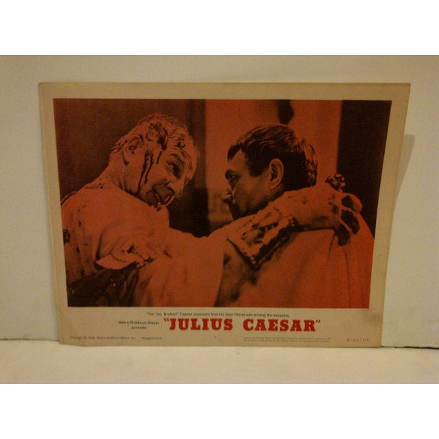 "This is a vintage movie poster (R62/179) of MGM's ""Julius Ceasar"" from 1962. This poster is in good condition for its age."
