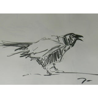 Contemporary Jose Trujillo Original Charcoal Drawing of Black Crow Bird For Sale