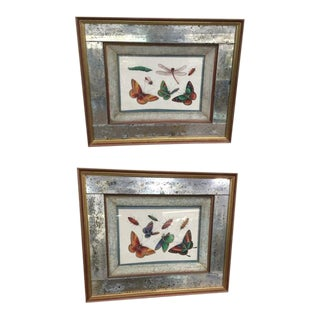 1830s Chinese Butterfly Pith Paintings in Fabulous Frames - a Pair For Sale