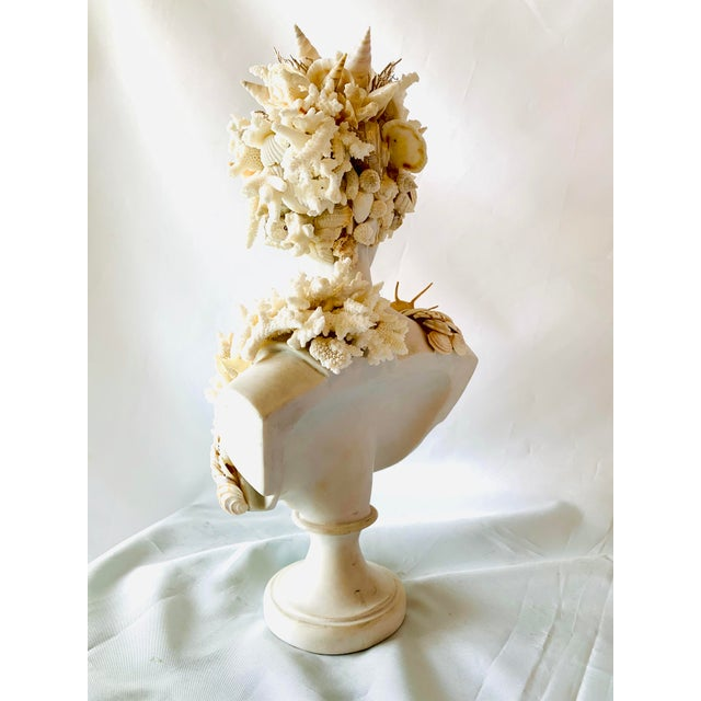 "Mediterranean Mediterranean Seashell-Encrusted Diana Bust - 14"" For Sale - Image 3 of 5"