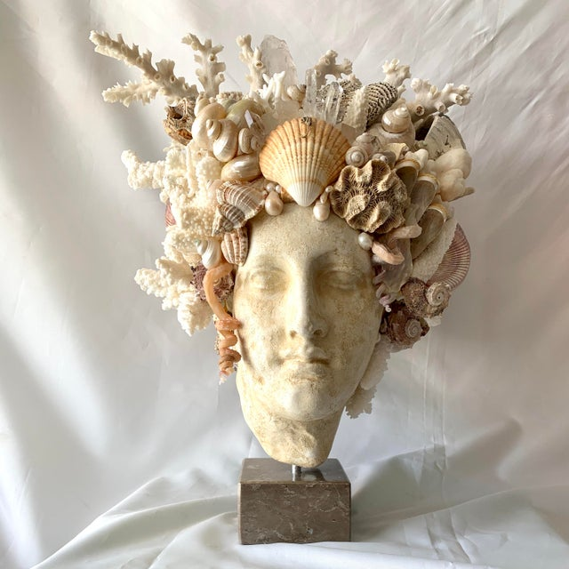 Large Shell Hygiea Bust For Sale - Image 12 of 12