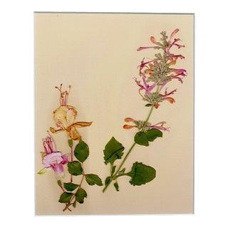 """""""Fuschia"""" Contemporary Botanical Still Life Print For Sale"""