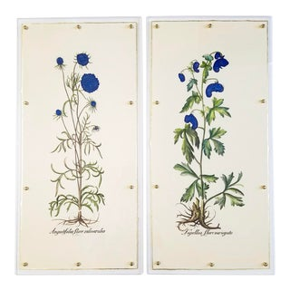 Hand Colored Besler Botanical Lithograph Prints Framed - a Pair For Sale