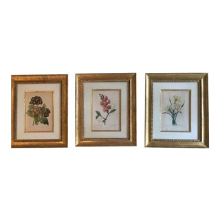 Trowbridge Gallery Gilt Framed & Matted Botanical Prints - Set of 3