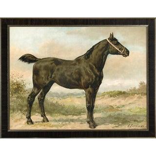 Irish Horse by Eerelman Framed in Italian Wood Vener Moulding For Sale