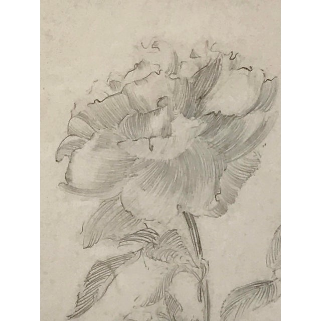 1920s Antique Drawing of a Flower by Charles Sheldon For Sale - Image 5 of 6