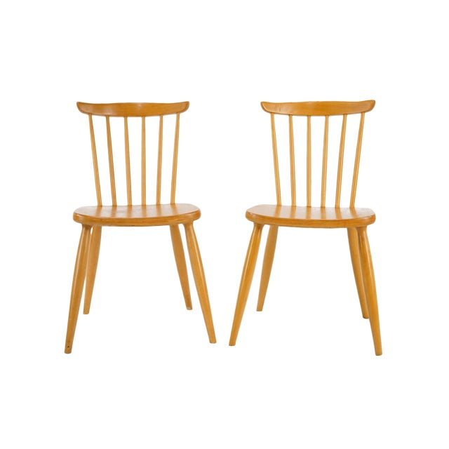 Surprising Vintage Mid Century Beechwood Dining Chairs A Pair Pabps2019 Chair Design Images Pabps2019Com