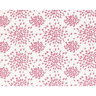 Hinson for the House of Scalamandre Fireworks Fabric in Cupcake Pink For Sale