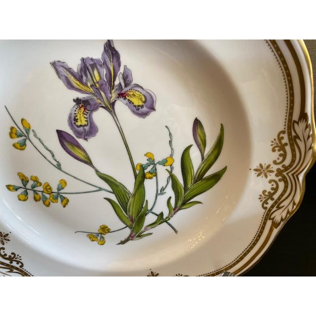 Spode Spode English Dinner Stafford Flowers Bone Plates - 14 Pieces For Sale - Image 4 of 9