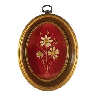 20th Century Traditional Petite Botanical on Velvet in Oval Frame For Sale