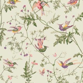 Cole & Son Hummingbirds Botanic Wallpaper - 14070 - Price Per 11 Yard Roll For Sale