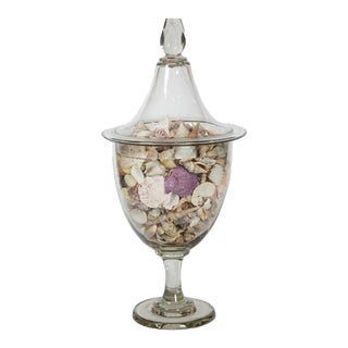 Vintage Glass Apothecary Jar with Shells For Sale