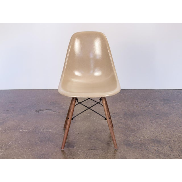 Priced per individual chair. We have a large group of scarce, Greige fiberglass shells chairs by Charles and Ray Eames for...