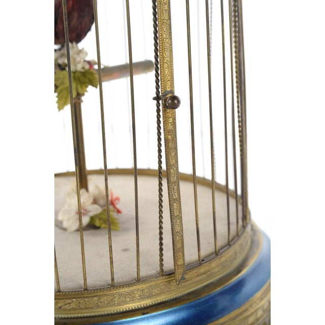 German Mechanical Birdcage Automaton Music Box For Sale - Image 9 of 9