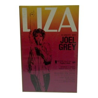 1981 Michelob Concert Series Liza at Popular Creek For Sale