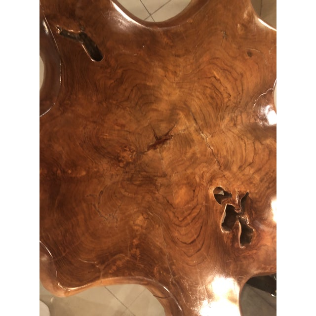 Wood Vintage Mid-Century Modern Freeform Cypress Tree Root Trunk Dining Center Table Base For Sale - Image 7 of 13