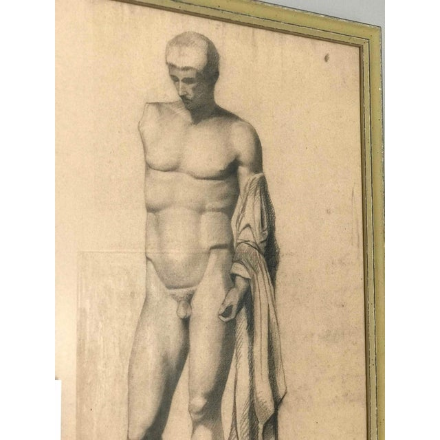A pair of full length and half length framed charcoal drawings of a sculpture of a male nude. Originating in France c. 1880.