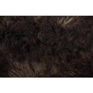 """Contemporary Natural Sheepskin Pelt - 2'0""""x3'0"""" Preview"""