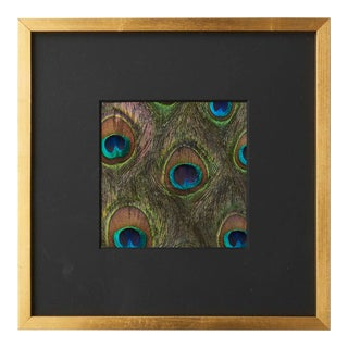 Schumacher Hand-Applied Natural Peacock Feathers Textile Art, Gold Framed For Sale