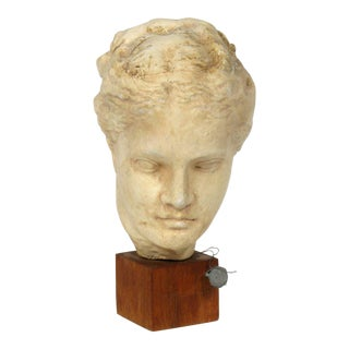 Antiquities Bust, Museum Replica Sculpture