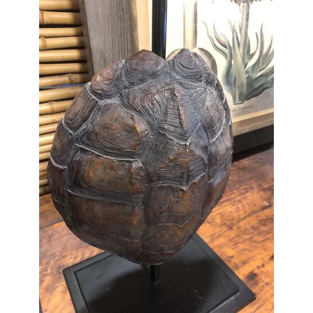 Early 21st Century Faux Turtle Shell Lamps- a Pair For Sale - Image 5 of 8