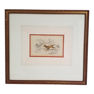"""Early 20th Century Antique """"The Springer"""" Spainel Engraving by William Lizars"""