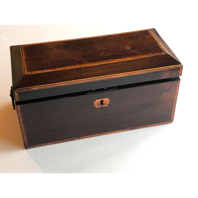 Mahogany Box With Lion Head Handles For Sale - Image 11 of 11