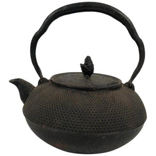 1920s Japanese Cast Iron Nanbu Tekki Teapot For Sale