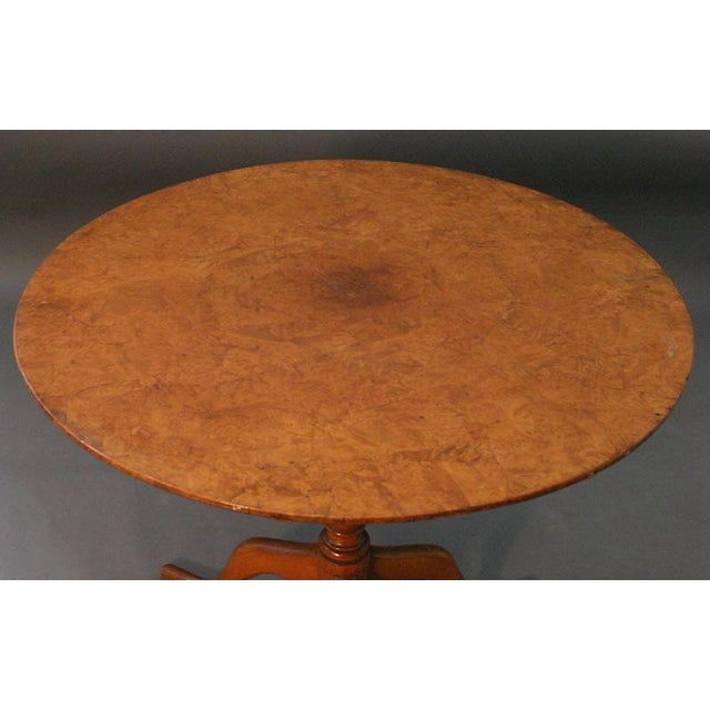 Antique Alder Root Table by C. Haust - Image 3 of 4
