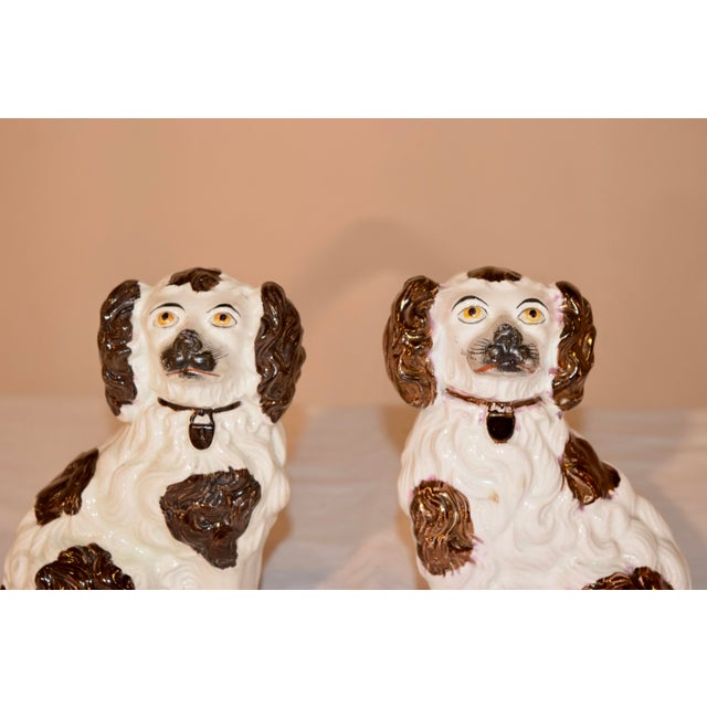 Pair of 19th century Staffordshire spaniels from England made from wonderfully detailed molds, decorated with brown and...