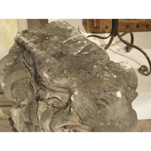 Stone Magnificent Pair of Antique Stone French Lion Architecturals For Sale - Image 7 of 10