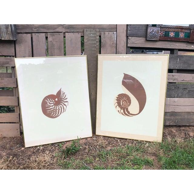 Vintage Van Guard Studio Nautilus Shell Lithographs - a Pair For Sale - Image 4 of 9
