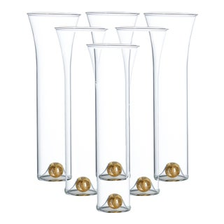Golden Globe Champagne Set, Clear, Set of 6 For Sale