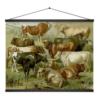 Cattle Wall Hanging For Sale