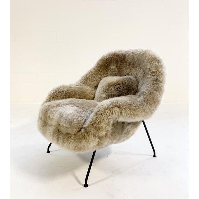 Mid-Century Modern Vintage Eero Saarinen Womb Chair Restored in New Zealand Sheepskin For Sale - Image 3 of 10