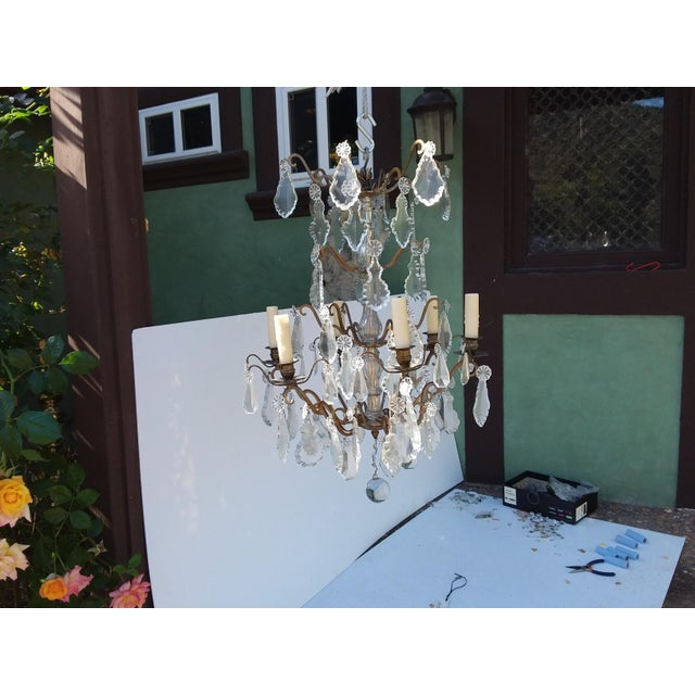 Metal French Bronze and Crystal Cage Style Chandelier For Sale - Image 7 of 13