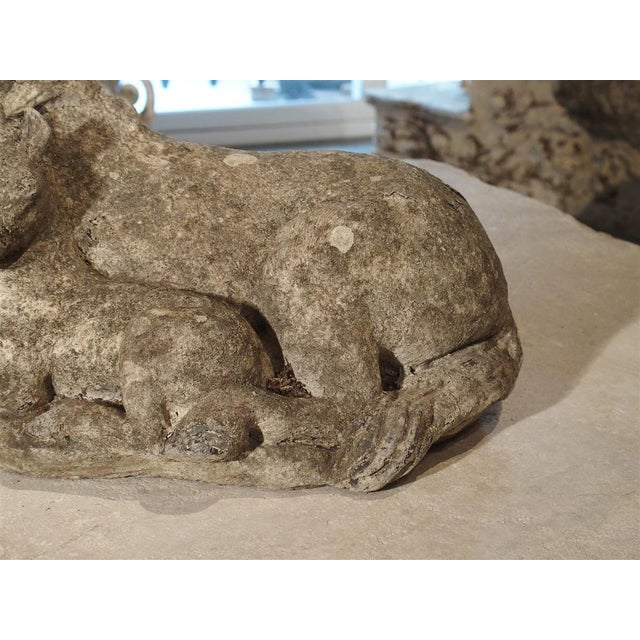 Gray Small Decorative Ponies Statue of Reconstructed Stone From France For Sale - Image 8 of 10