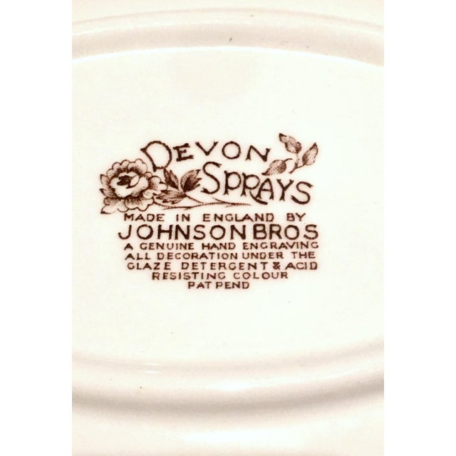 "Vintage English Ironstone ""Devon Sprays"" Dinnerware by Johnson Brothers - Set of 16 For Sale - Image 11 of 12"