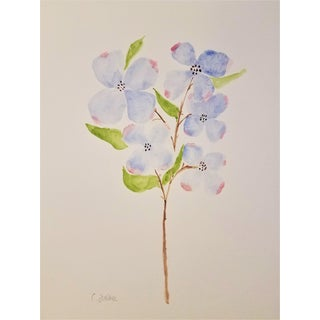 "Original Botanical Watercolor ""Dogwood 1"" by Contemporary Artist Christine Frisbee 9 X 12 For Sale"