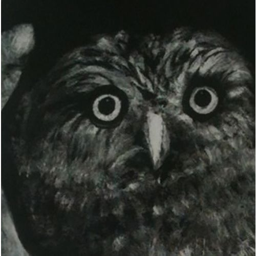 Night Owl by Sylvia Roth - Image 2 of 2