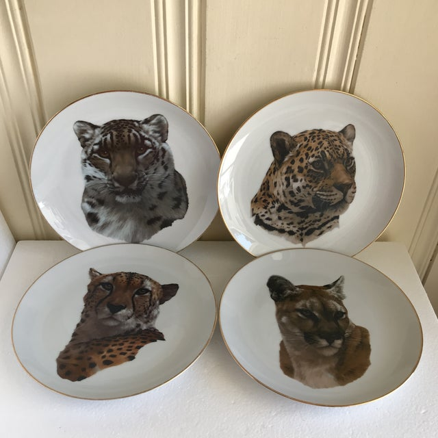 Vintage Handcrafted Lion Cougar Plates, Set of Four For Sale - Image 10 of 10
