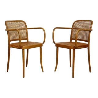 Mid Century Modern Bentwood & Cane Pair of Prague Armchairs Hoffman for Stendig For Sale