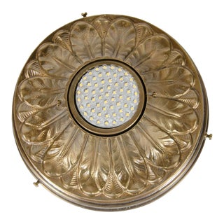 Hollywood Regency Acanthus Style Patinated Brass Spotlight For Sale