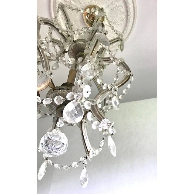 Maria Theresa Crystal Chandelier Made in Italy For Sale - Image 4 of 8
