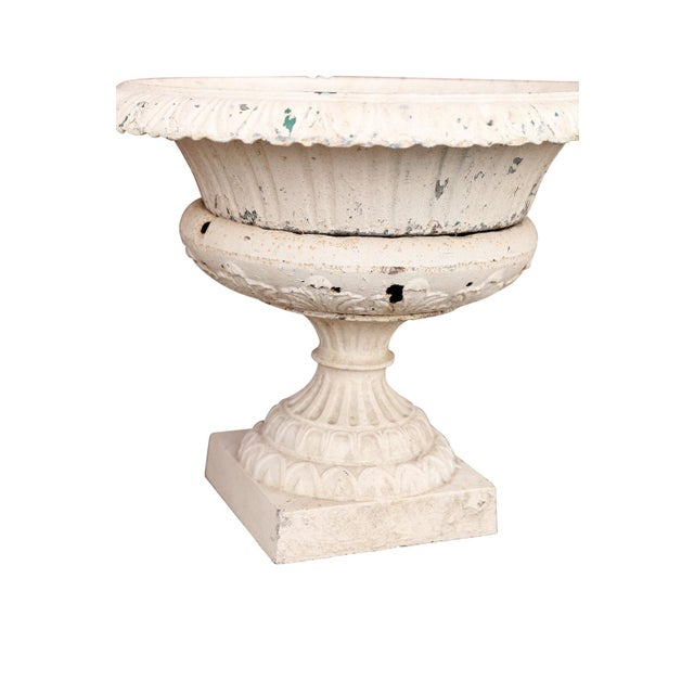 Pair of French Garden Urns For Sale In Houston - Image 6 of 10