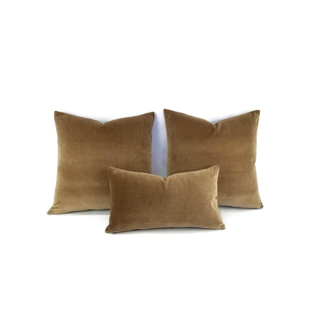 Contemporary Brown Velvet Lumbar Pillow Cover For Sale - Image 3 of 6