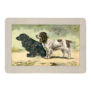 Cocker Spaniels, 1907 French Lithograph For Sale